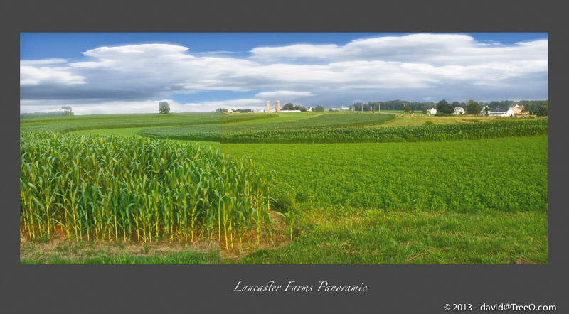 Lancaster Farms Panoramic