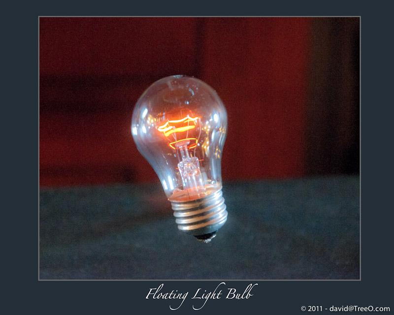 Floating Light Bulb - Philadelphia, Pennsylvania - October 20, 2008