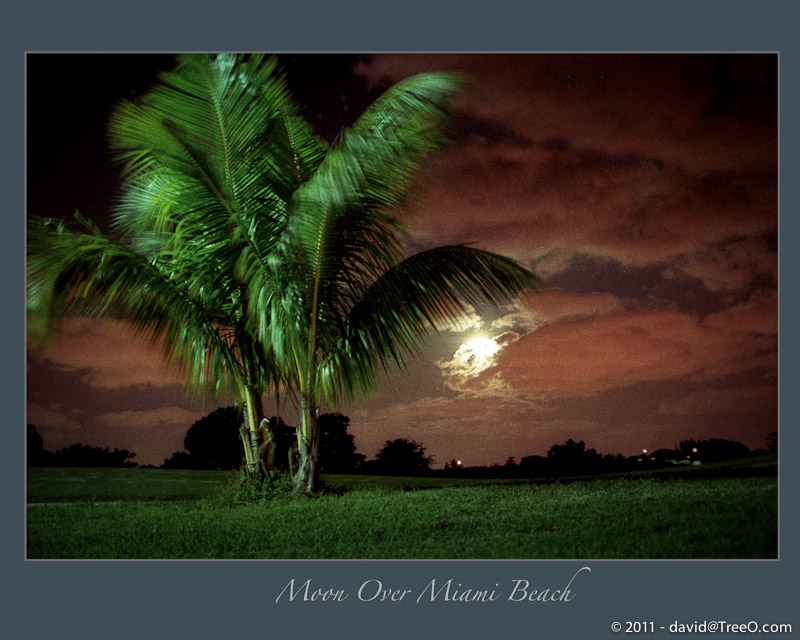 Moon Over Miami Beach - South Beach, Miami, Florida 1983