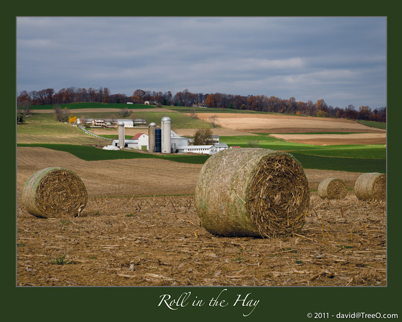Roll in the Hay - New Holland, Pennsylvania - November 11, 2008