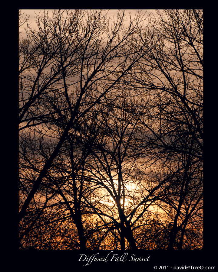Diffused Fall Sunset - Langhorne, Pennsylvania - November 22, 2010