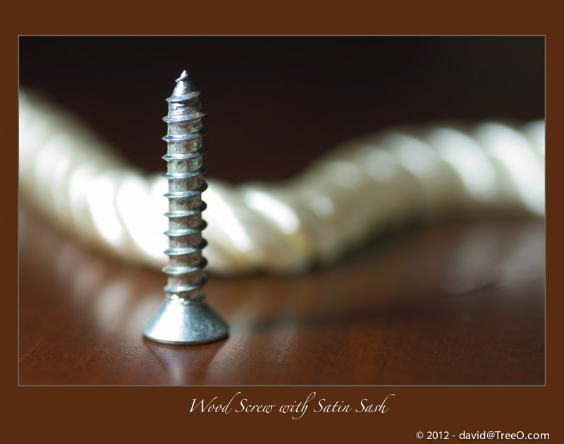 Wood Screw with Satin Sash - Still life photograph captured on October 16, 2008