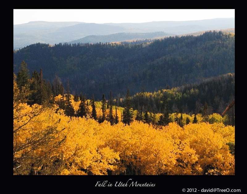 Fall in Utah Mountains - iPhone photograph - Southern Utah - October 2, 2012