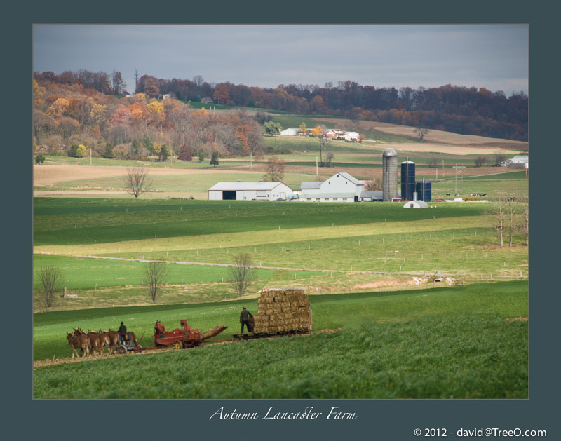 Autumn Lancaster Farm - Lancaster County, Pennsylvania - November 11, 2008