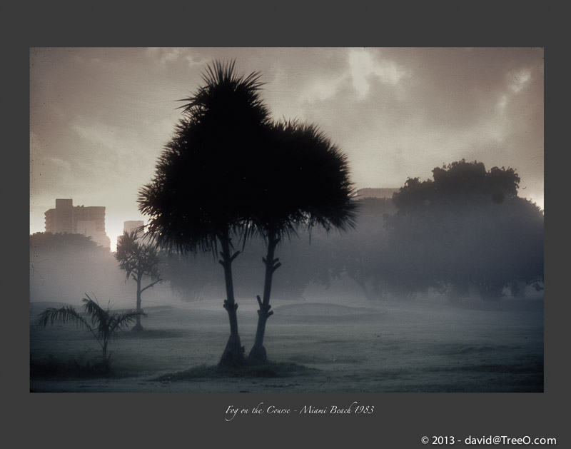 Fog on the Course - Miami Beach 1983