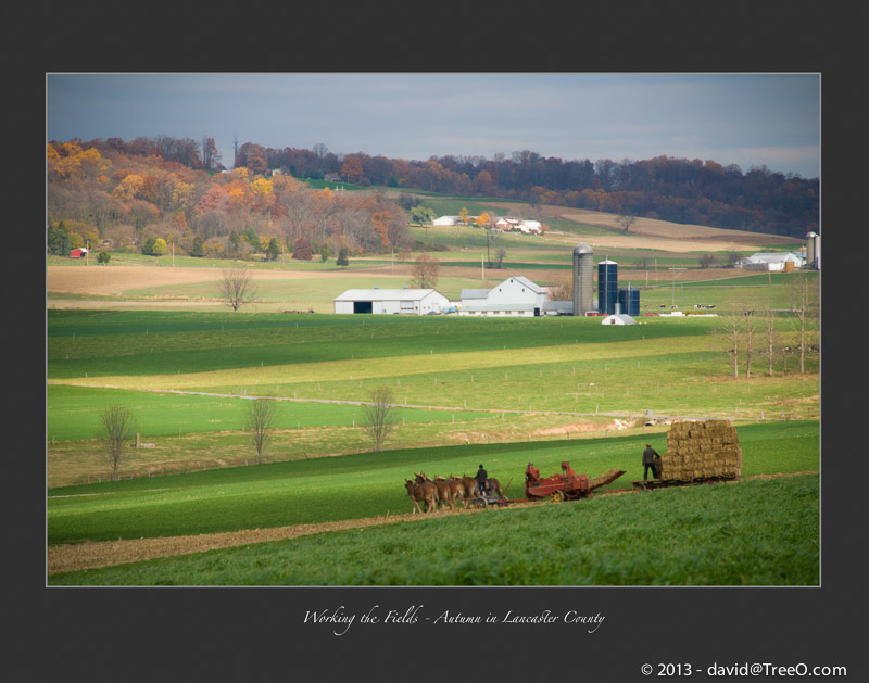 Working the Fields - Autumn in Lancaster County