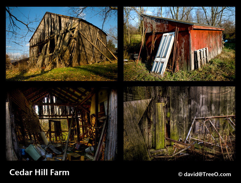 Cedar Hill Farm Series