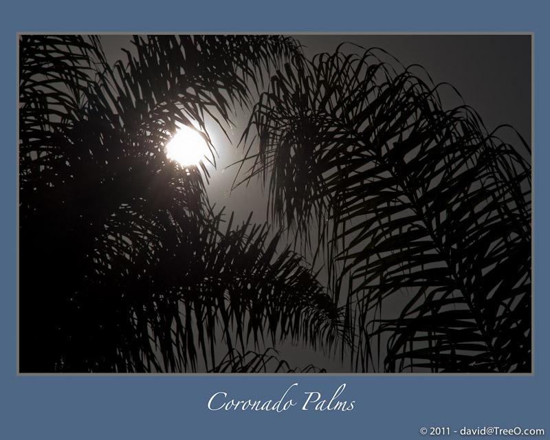 Coronado Palms