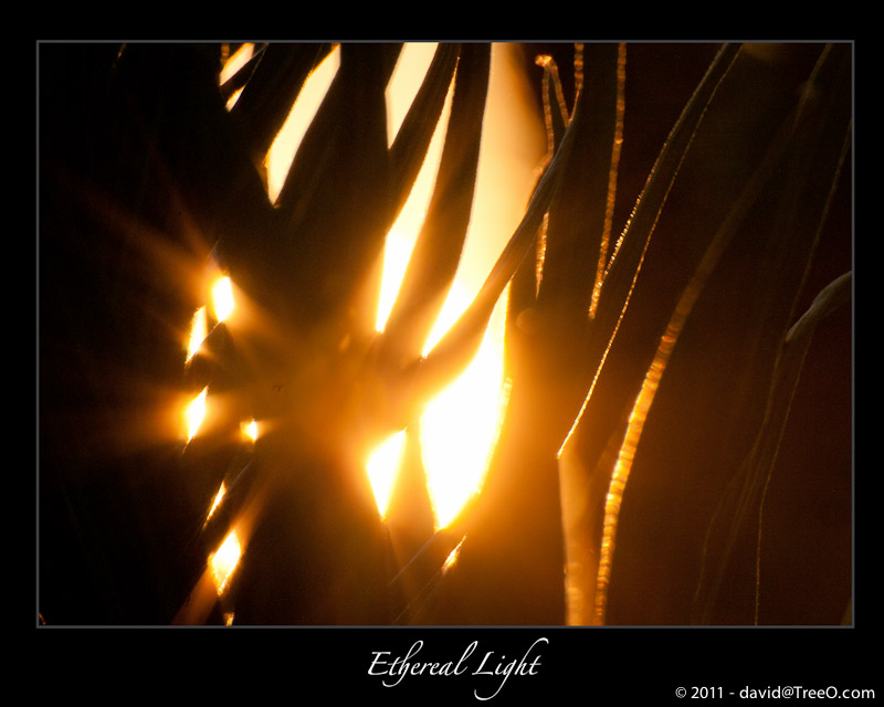 Ethereal Light
