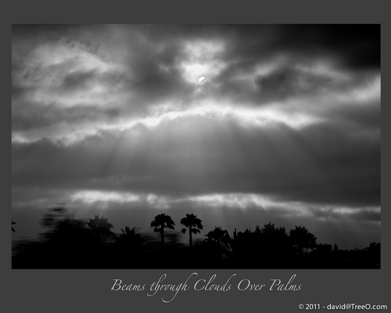 Beams through Clouds Over Palms
