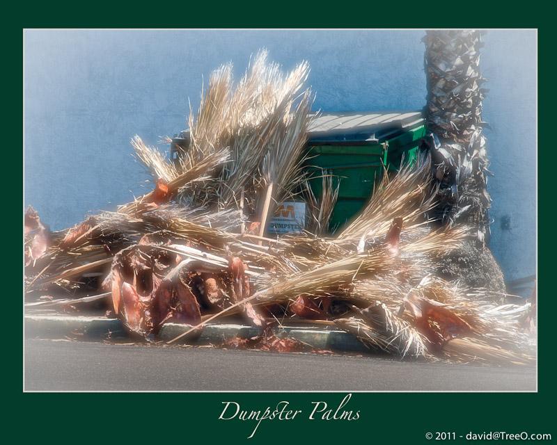 Dumpster Palms