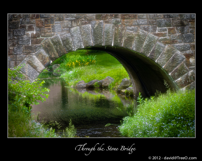 Through the Stone Bridge