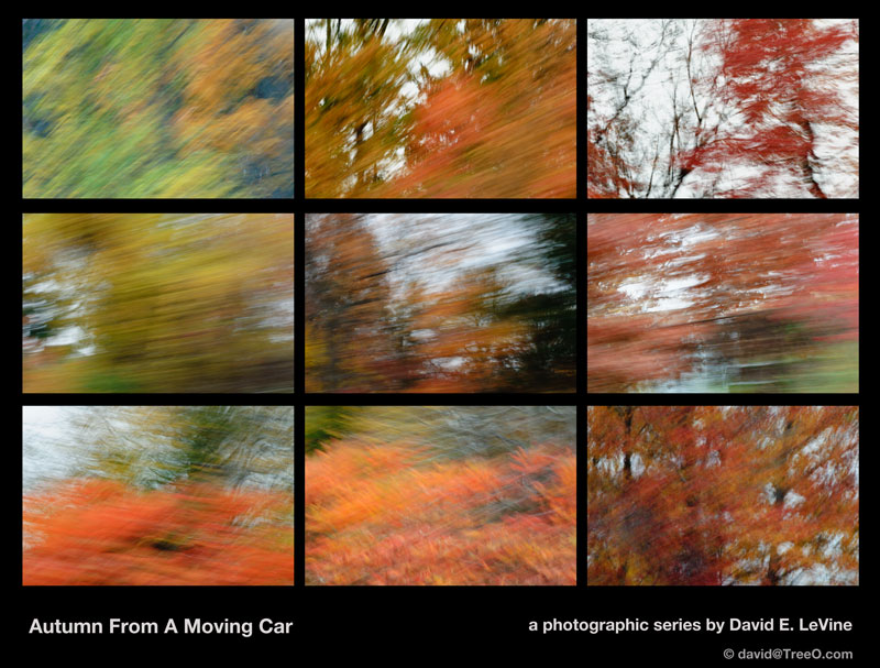 Fall from a Moving Car Series