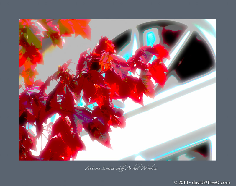 Autumn Leaves with Arched Window