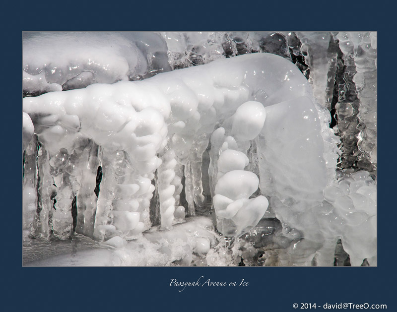Passyunk Avenue on Ice