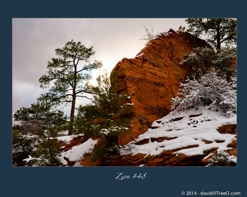 Zion Red Rock and Snow