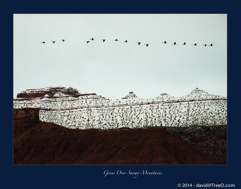 Geese Over Snowy Mountains