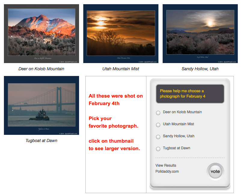 Please help me choose a photograph for February 4