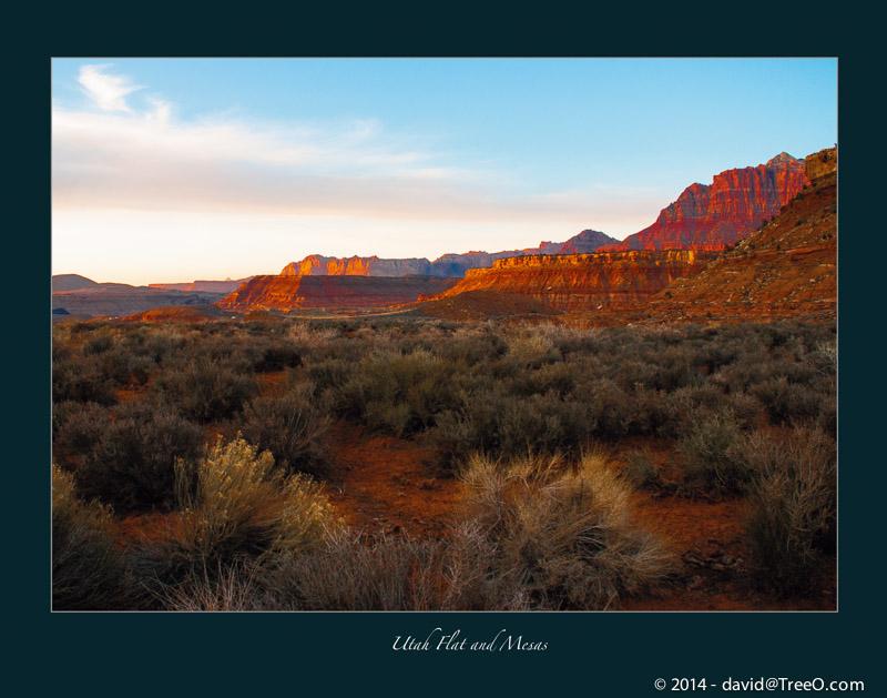 Utah Flat and Mesas
