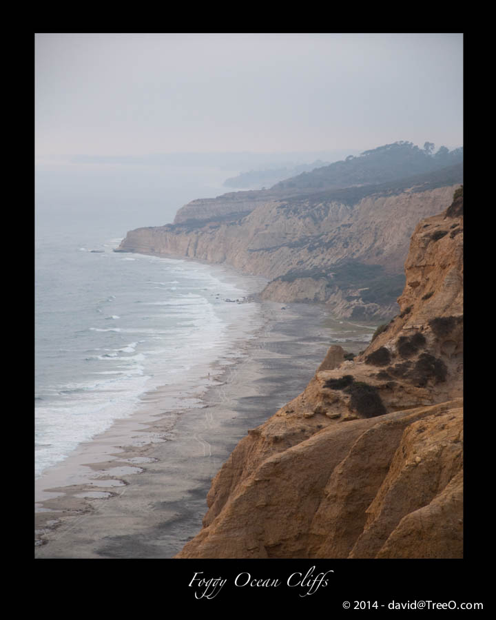 Foggy Ocean Cliffs