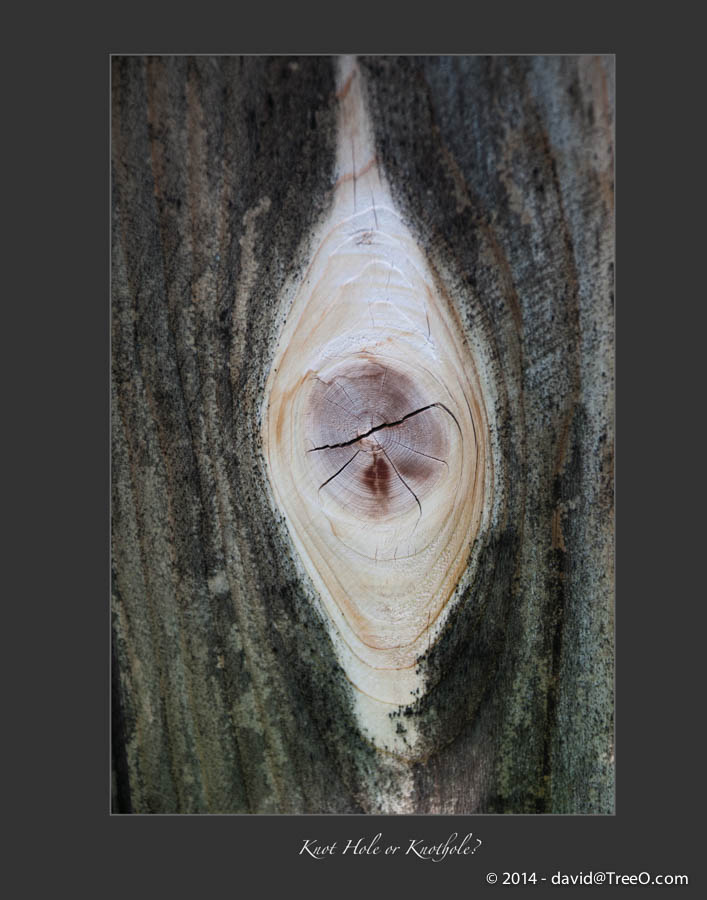 Knot Hole or Knothole?