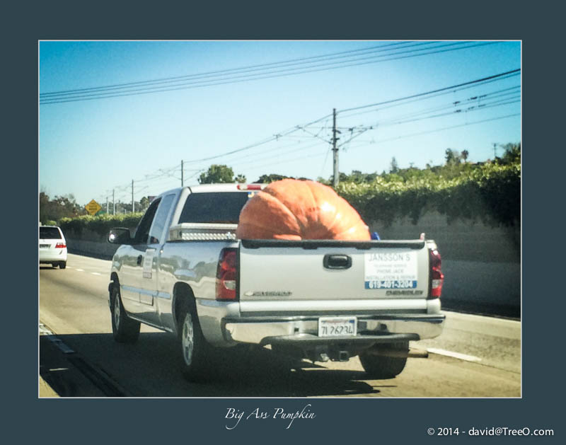 Big Ass Pumpkin