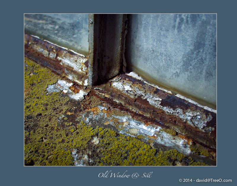 Old Window & Sill