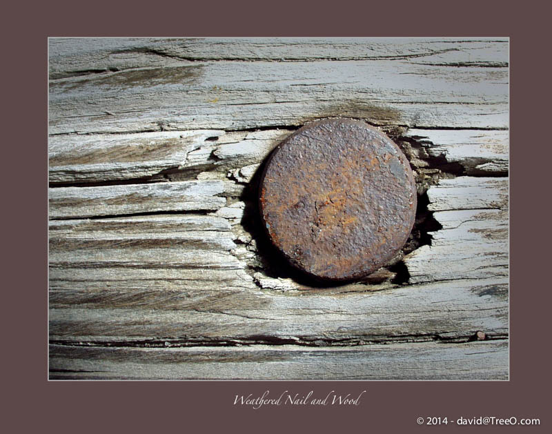 Weathered Nail and Wood